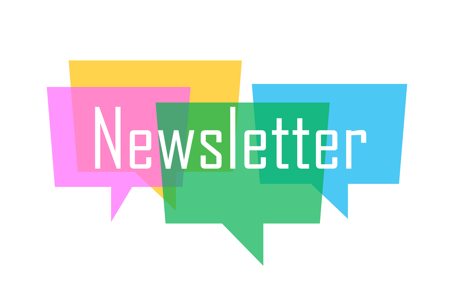 Check out our new Newsletter!